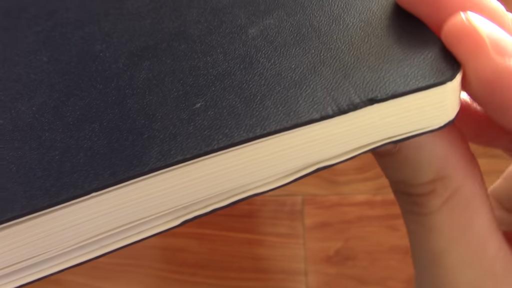 Leuchtturm 1917 Softcover Notebook Review 1 45 screenshot