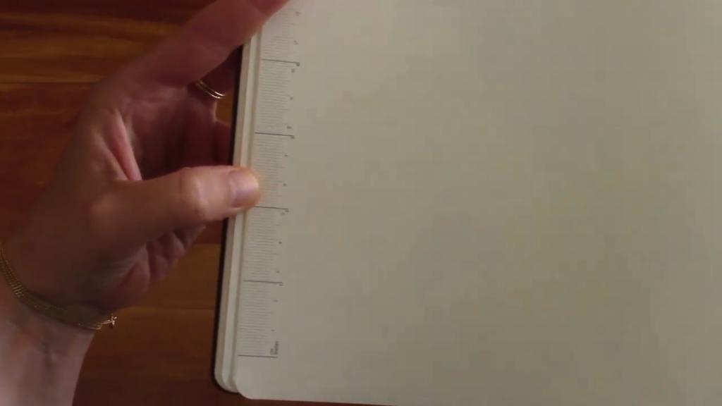 Moleskine Pro Planner XL Review 5 18 screenshot