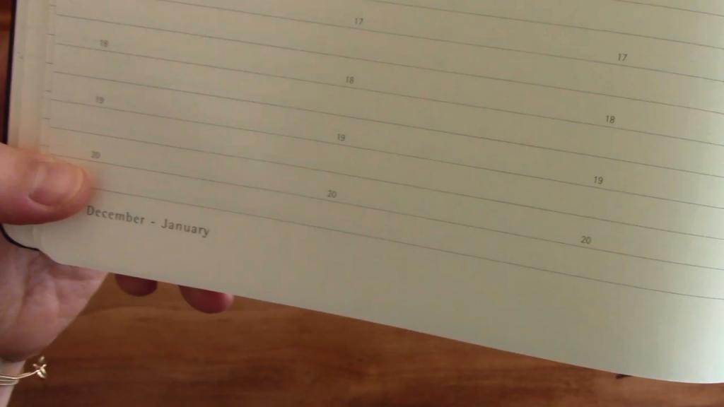 Moleskine Pro Planner XL Review 6 8 screenshot