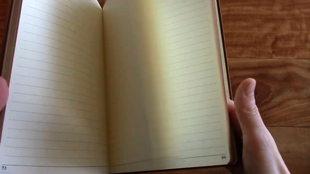 Le Stallion Notebook Review 3 54 screenshot