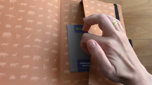 BEST Notebooks for BULLET Journaling 5 23 screenshot