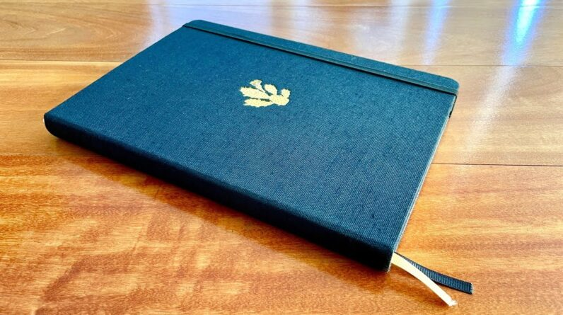 Dingbats Pro Notebook Review